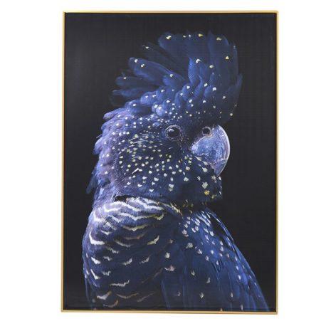 Tropic Parrot Picture